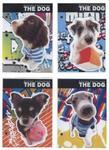 Wkład do segregatora A6 The Dog 10 sztuk mix w sklepie internetowym Booknet.net.pl