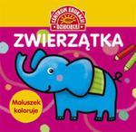 Maluszek koloruje Zwierzątka Książka z naklejkami w sklepie internetowym Booknet.net.pl