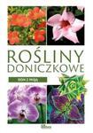 Dom z pasją. Rośliny doniczkowe w sklepie internetowym Booknet.net.pl