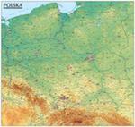 Polska. Mapa Ogólnogeograficzna mapa ścienna oprawiona w listwy w sklepie internetowym Booknet.net.pl