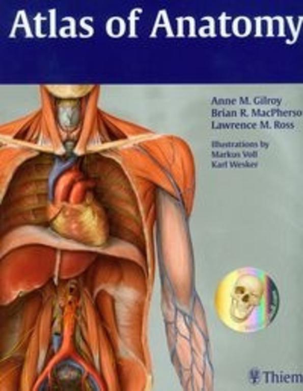 Best atlas of human anatomy