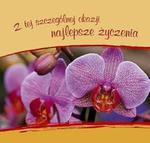 Z tej szczególnej okazji najlepsze życzenia w sklepie internetowym Booknet.net.pl