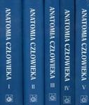 Anatomia człowieka t.1-5 w sklepie internetowym Booknet.net.pl