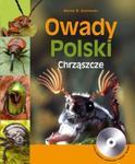 Owady Polski Chrząszcze w sklepie internetowym Booknet.net.pl