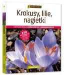 Krokusy, lilie, nagietki. w sklepie internetowym Booknet.net.pl