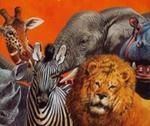 Zwierzęta Safari w sklepie internetowym Booknet.net.pl