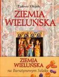 Wieluń i okolice. Ziemia Wieluńska w sklepie internetowym Booknet.net.pl