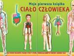 Ciało człowieka. Moja pierwsza książka w sklepie internetowym Booknet.net.pl