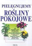 Pielęgnujemy rośliny pokojowe w sklepie internetowym Booknet.net.pl