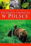 Zwierzęta chronione w Polsce w sklepie internetowym Booknet.net.pl
